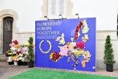 APE-VBN-FLOWERING-2017--23