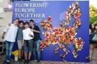 flowering_europe-0058