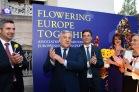 flowering_europe-0142
